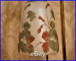 Paire De Lampe Art Deco / Art Nouveau. Tulipes Degagees A L'acide